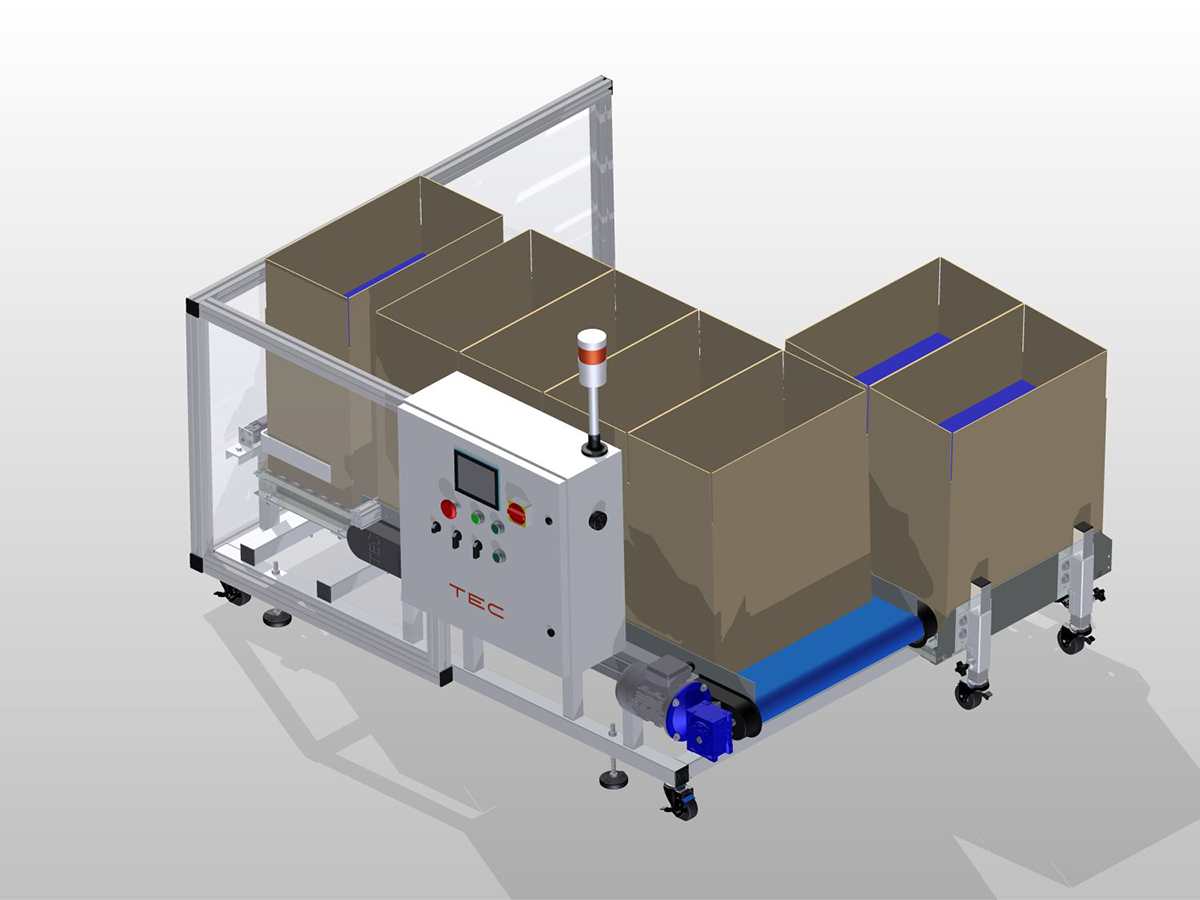 Side-by-Side Box Filling System